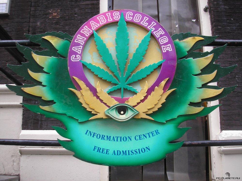 Дух свободы и запах марихуаны