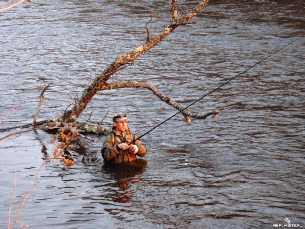 река обша рыбалка отзывы