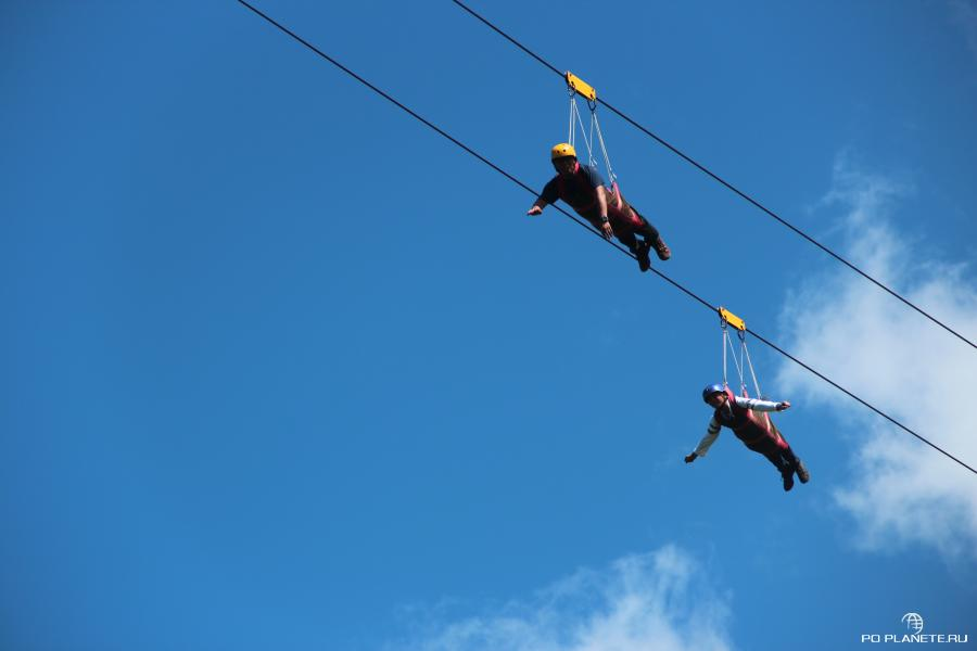 Zipline на Бохоле