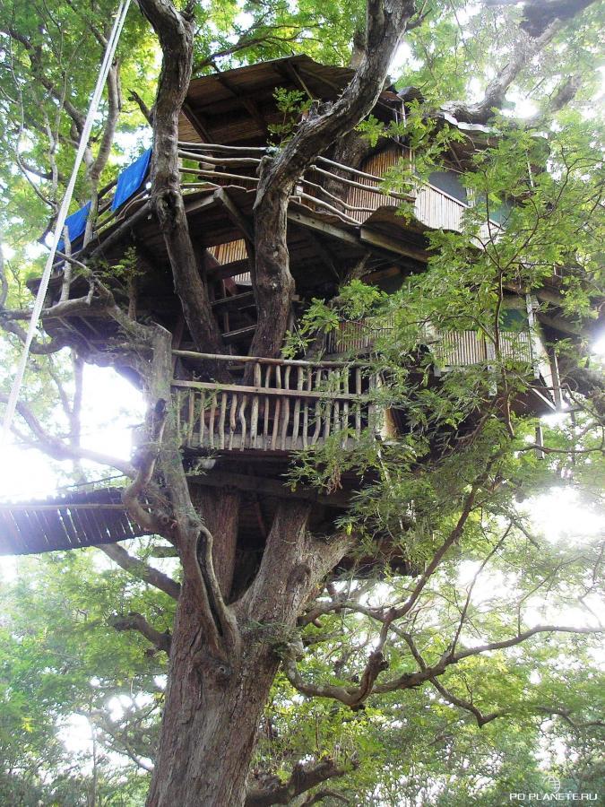 Санья. Парк Наньшань. Дома на деревьях (Tree Houses )