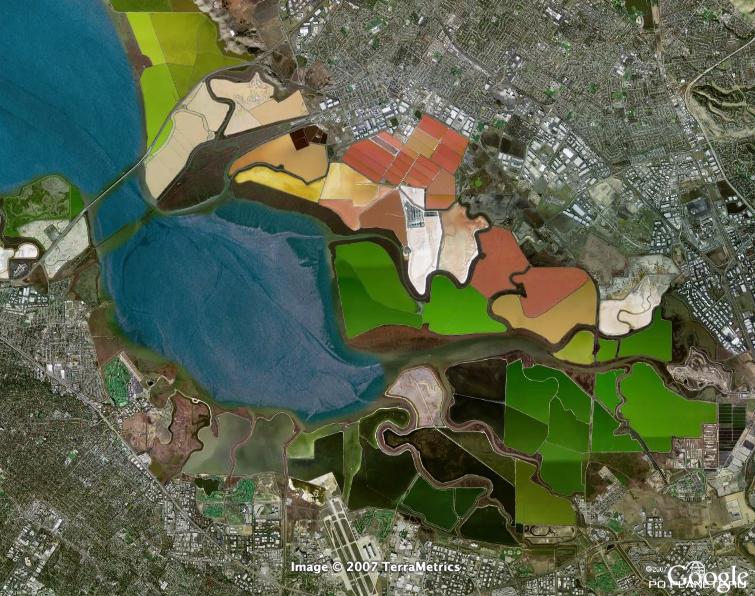 Цветные пруды Сан-Франциско