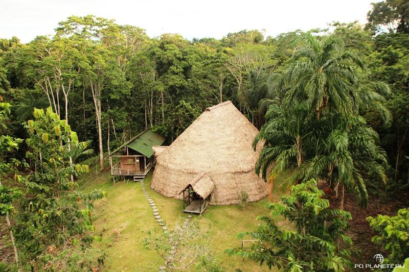 Бразильская Амазония, Reserva Natural Palmari