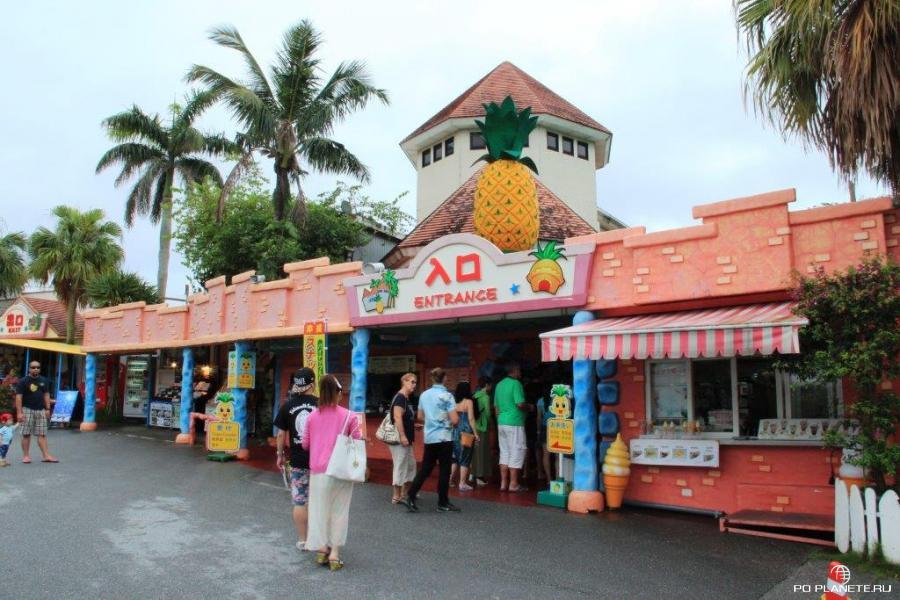 Вход в ананасовый парк