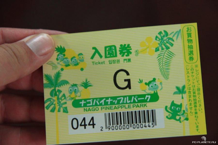 Входной билет в ананасовый парк