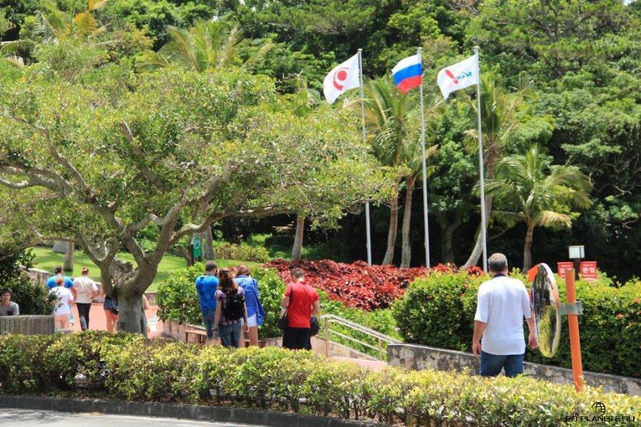 """К нашему приезду в парке """"Мир Окинавы"""" вывесили российский флаг"""