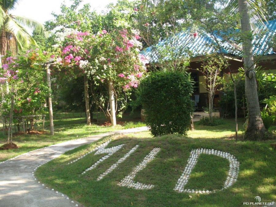 Путешествие в Таиланд и Лаос. Часть 1. Таиланд.