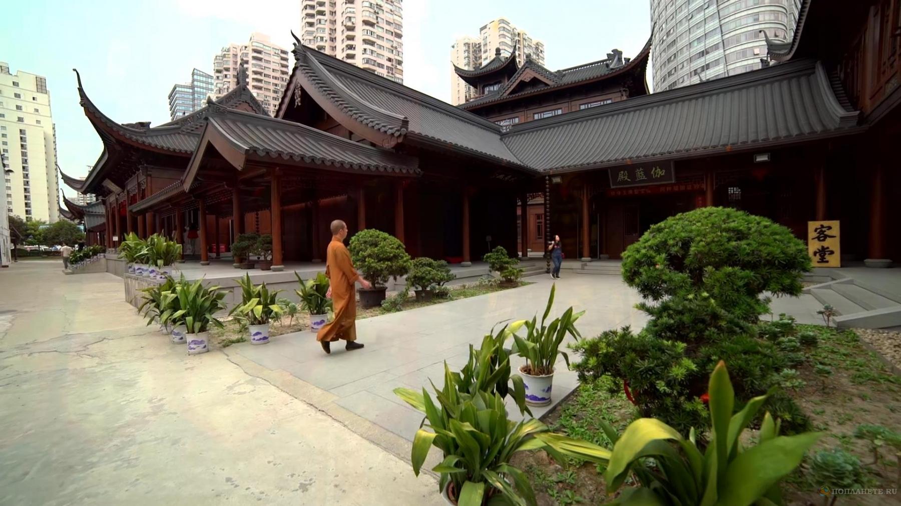 Прогулки по Шанхаю. Храм Нефритового Будды и Французский квартал